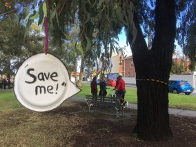 Save Me - Gandolfo Gardens Rally at Moreland Station
