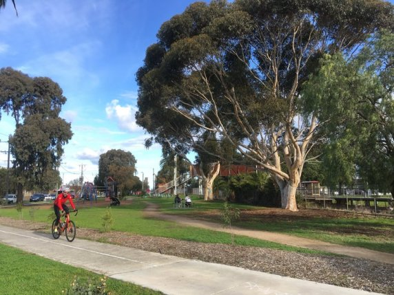 Gum trees on the east side of Moreland Station